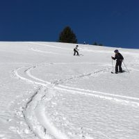 Backcountry Ski Experience!